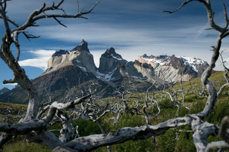 Torres del Paine Photography Tour | Zicasso