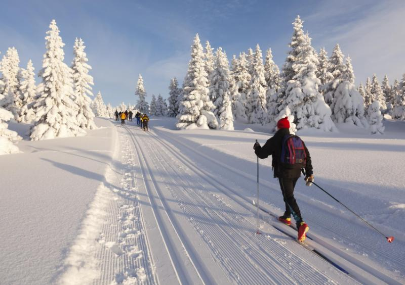 Cross country skiing in Norway.
