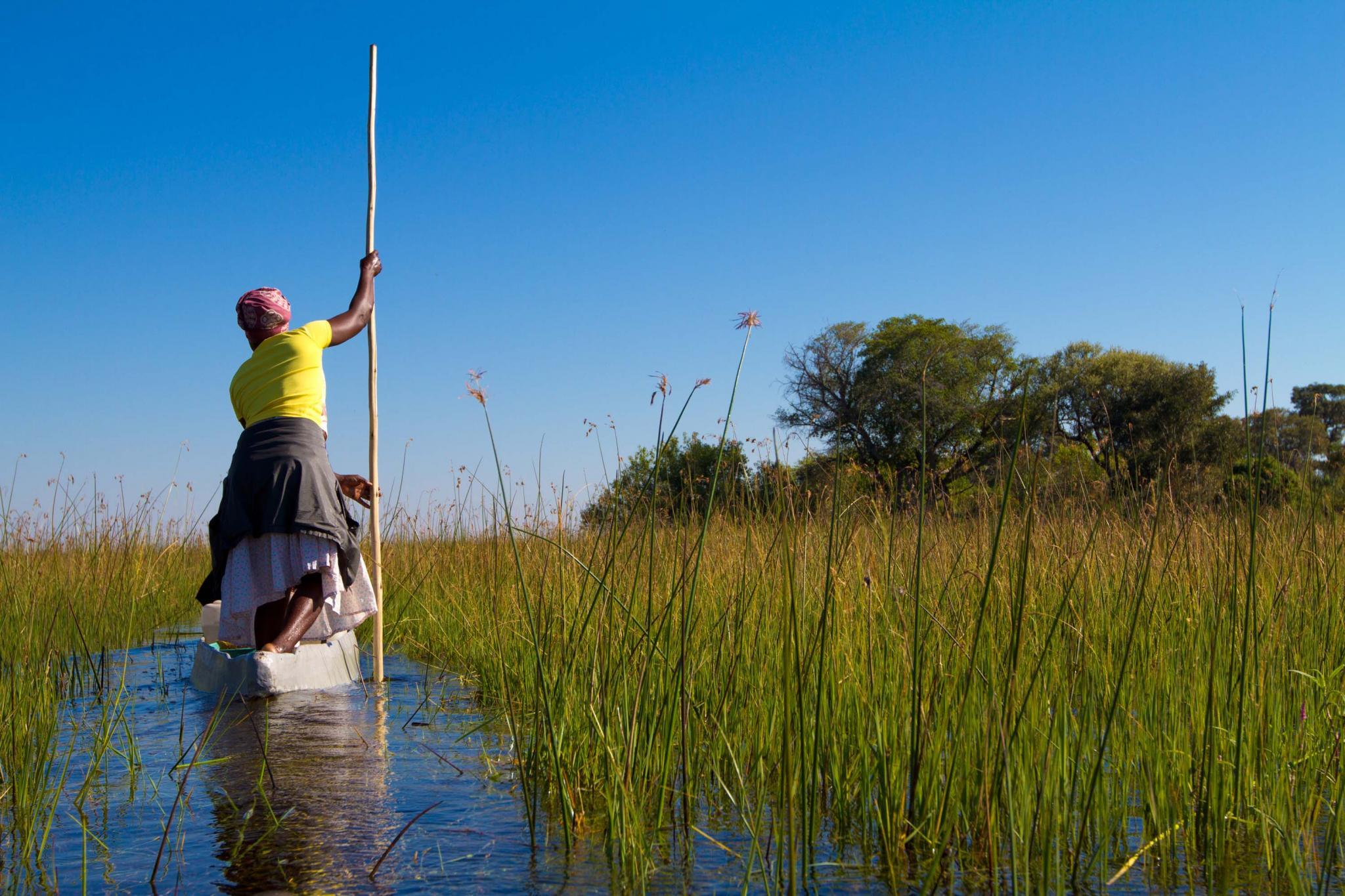 Botswana Amp South Africa Safari For Seniors Zicasso