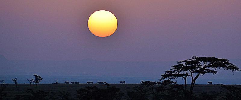 Kenya Safari For Couples Luxury Romance Amp Adventure In