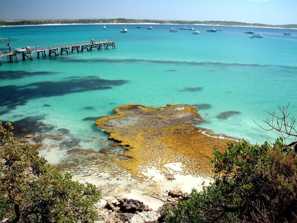 Kangaroo Island South Australia Information