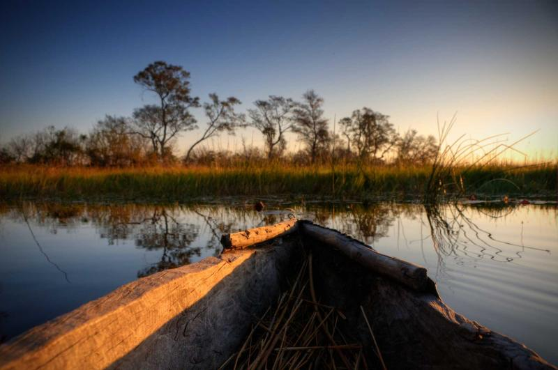 Chobe National Park Amp Okavango Delta Safari Package Zicasso