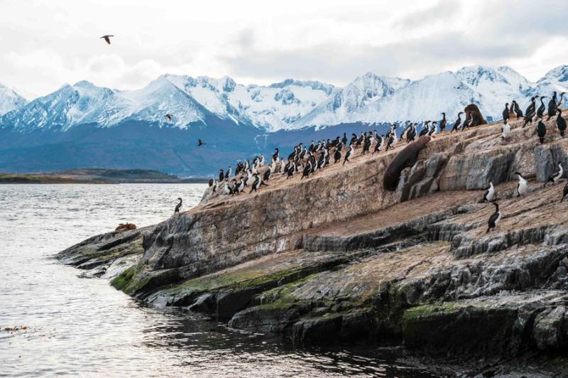 Beagle Reviews Southern Patagonia Tou...