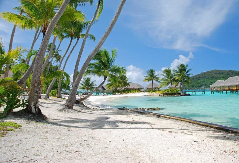 Sydeny Too Cook Islands
