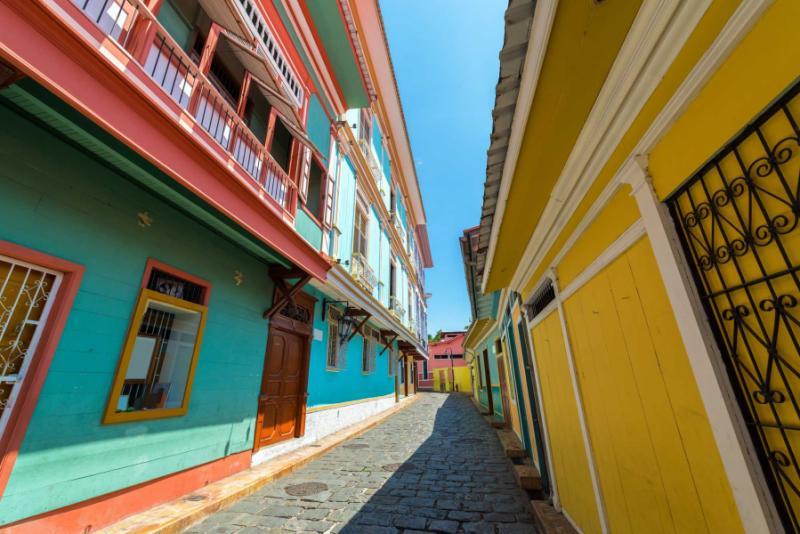 Ecuador Tour By Cruise Amp Train Amazon Andes Wildlife