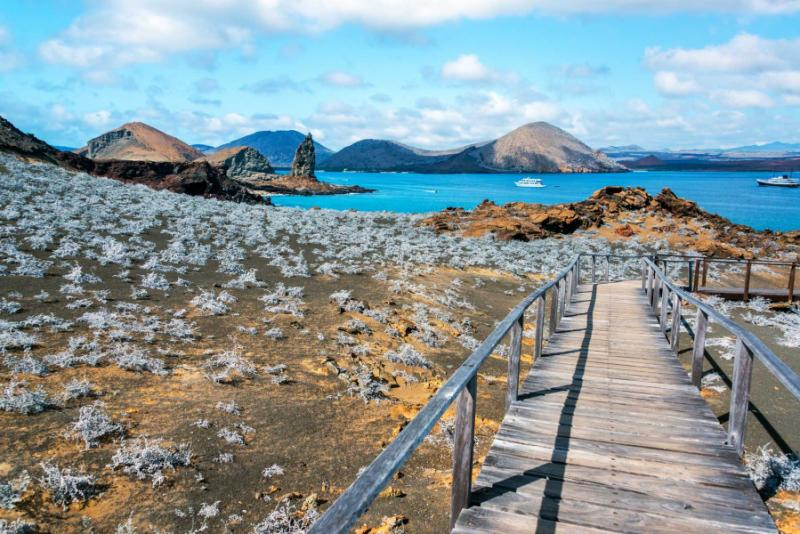 A Perfect Family Vacation To Galapagos Islands Zicasso - Galapagos vacations