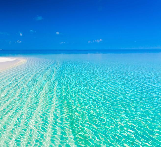 Fiji Beach: Castaway Island, Fiji & Sydney Vacation Tour: Luxuries Of