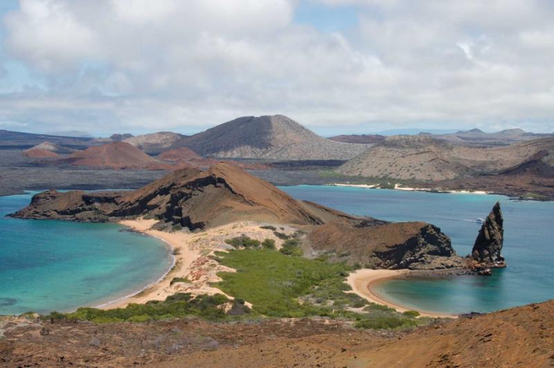 Galapagos Natural History Tours