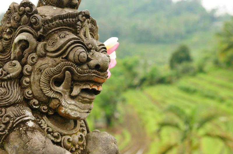 Image Result For Bali Information