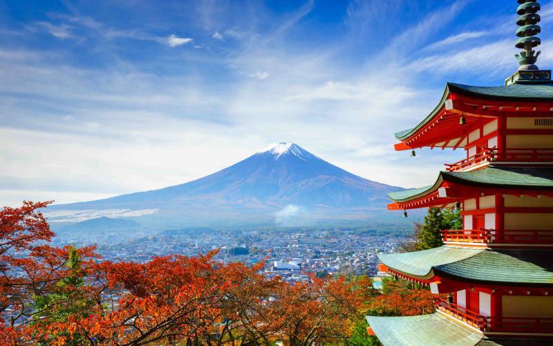 Luxury Tokyo Tour