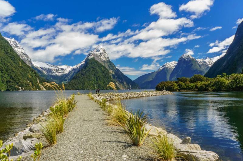 New Zealand Milford Sound Tour
