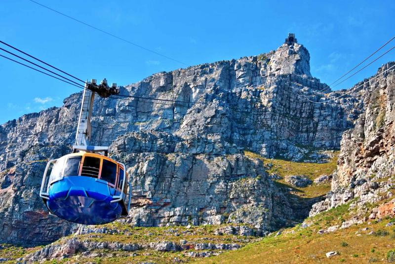 South africa city and wildlife tour art food safari for Cape town south africa travel