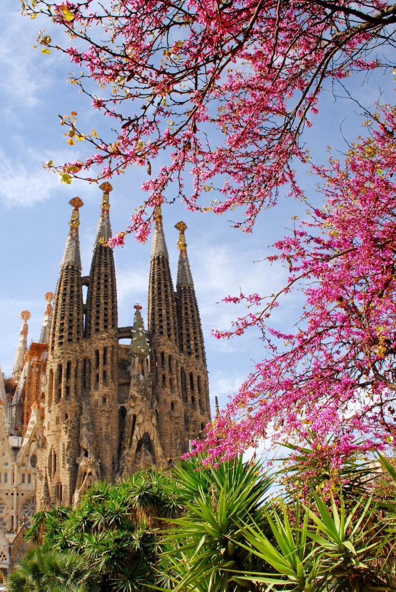 Sagrada Familia: General Information