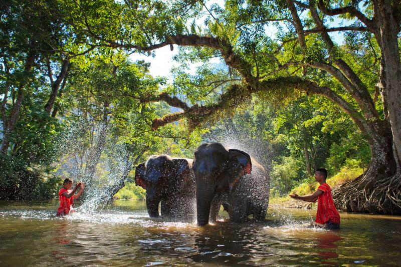 Thailand Wellness & Culinary Tour: Tranquility and