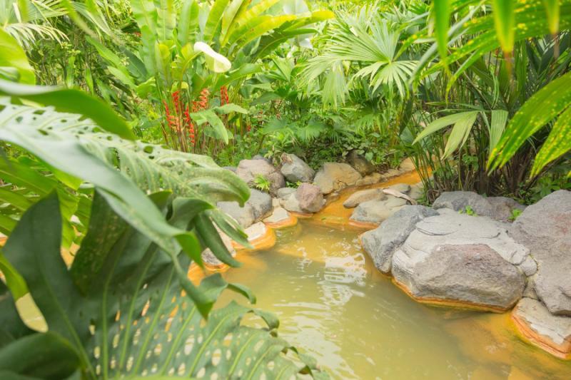 Tabacon Hot Springs, Arenal Volcano National Park, Costa Rica бесплатно