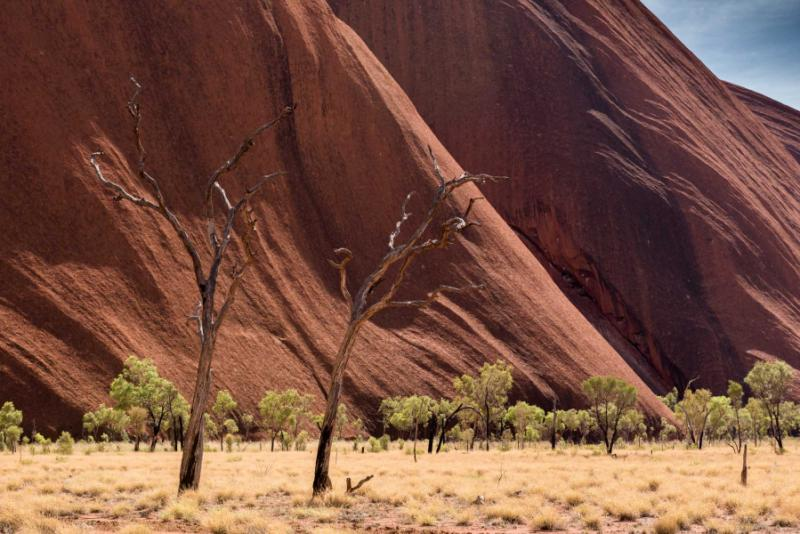 Natural Wonders Of Australia Amp New Zealand Tour