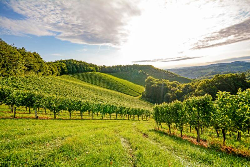 Splendors Of Northeast Italy Tour Veneto Amp Friuli Regions