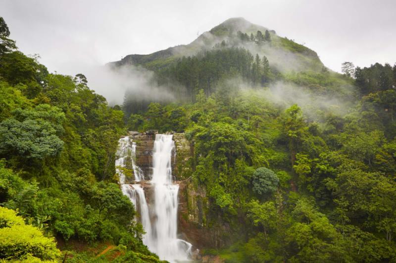 Untamed Wonders Of Sri Lanka Tour From Wildlife To