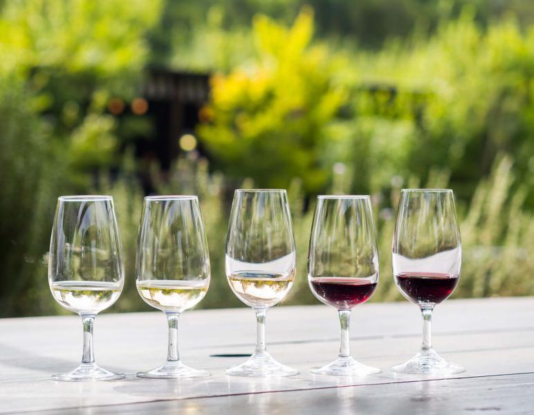 Decadence Wine Tours