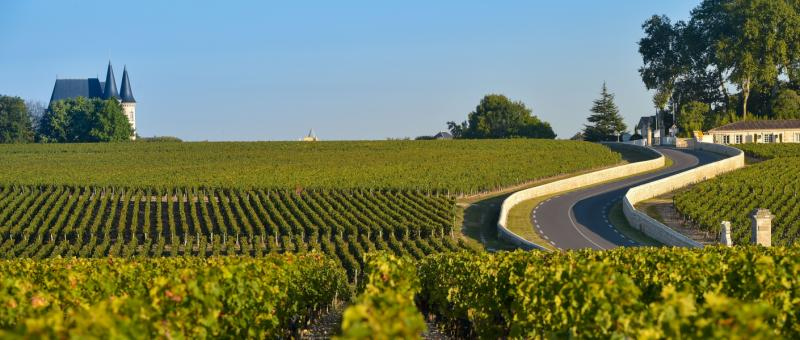 Luxury Trip To France Review Provence Region Wine border=