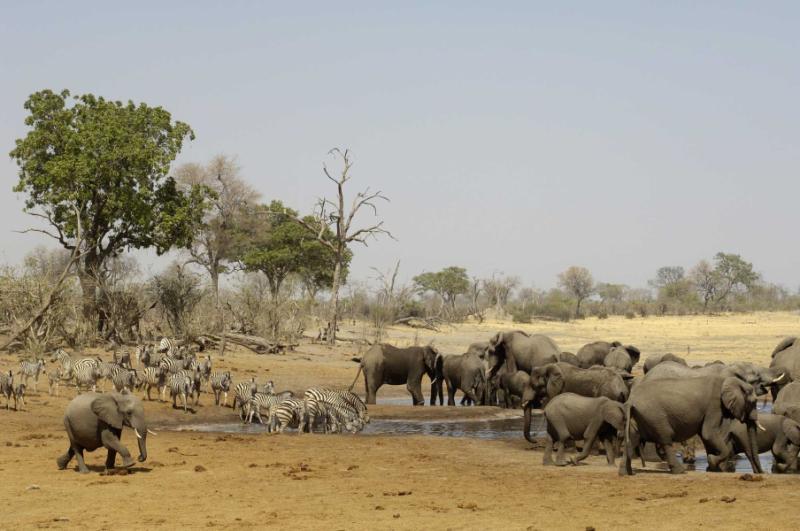 Trip Travel Agency Namibia