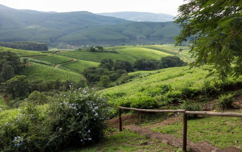 trips land tours africa highlights south