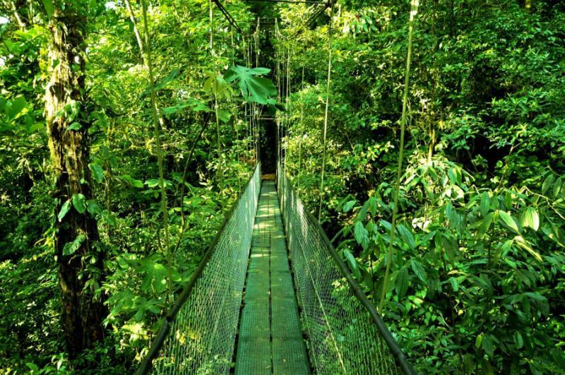 Costa Rica Amp Nicaragua Zicasso