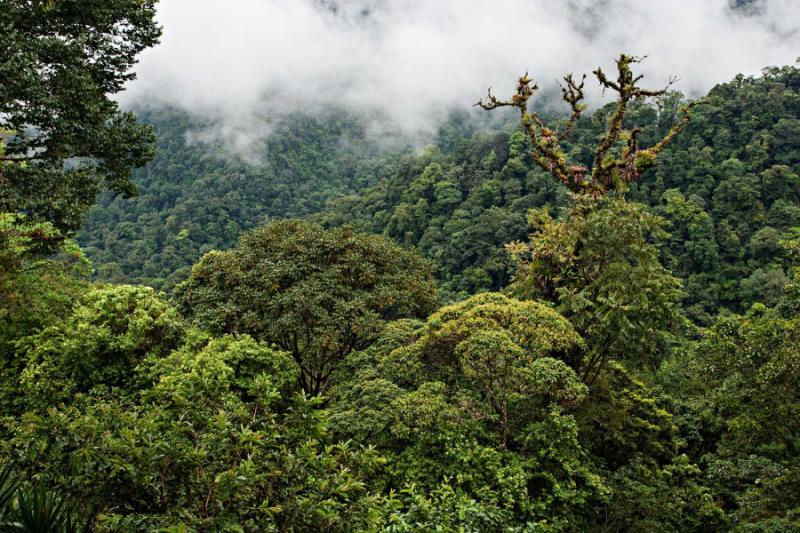 review south america tour ecuador galapagos islands