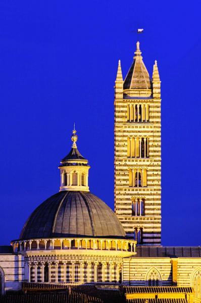 Italian Florence: Italy Travel Review: Rome, Pisa, Florence, Venice, Siena