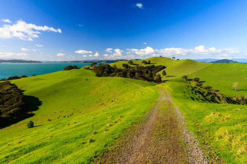 Lord Of The Rings Tour New Zealand Review