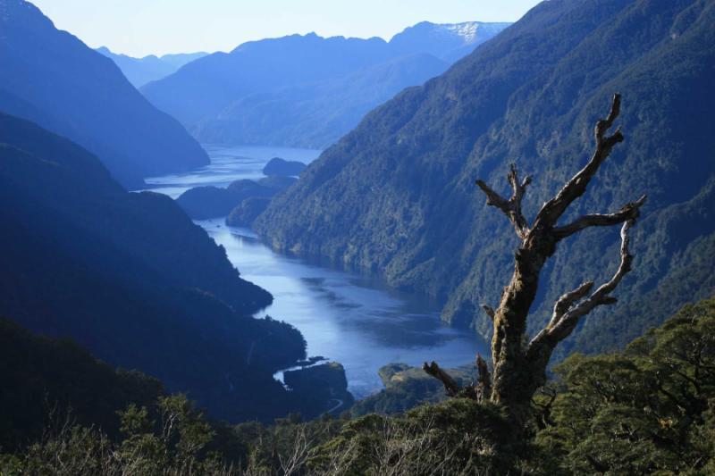 Travel Review Tour Of New Zealand S South Island Abel Tasman Lake Tekapo Trans Alpine