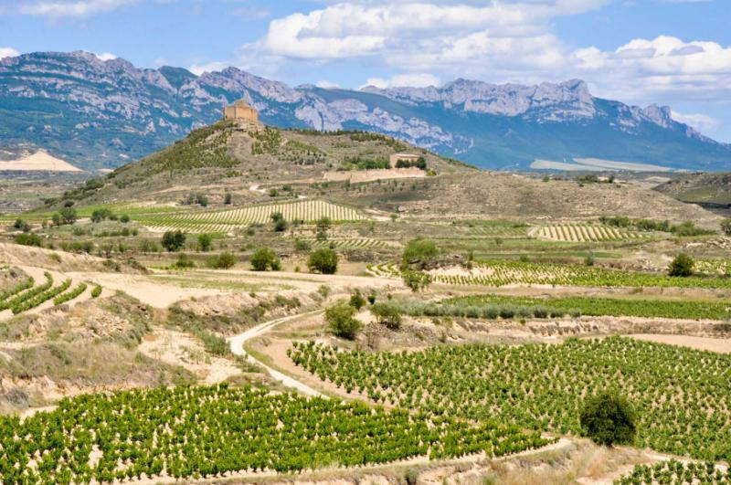Pamplona, Spain Guide | Fodor's Travel