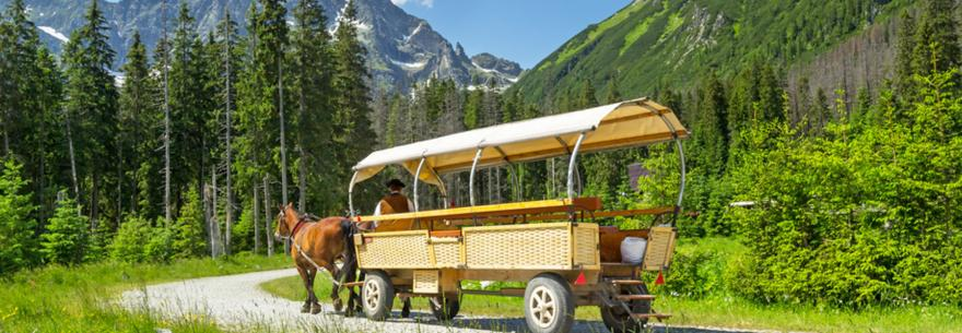 A traditional carriage in the Tatra Mountains of Poland.