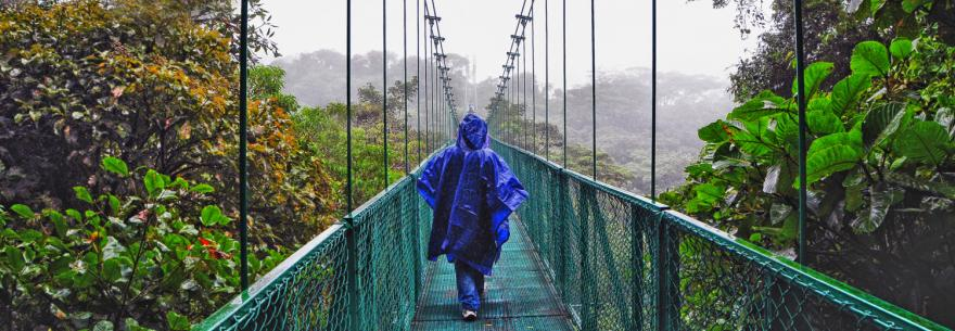 A hiker crosses a bridge in the Monteverde Cloud Forest Nature Reserve.