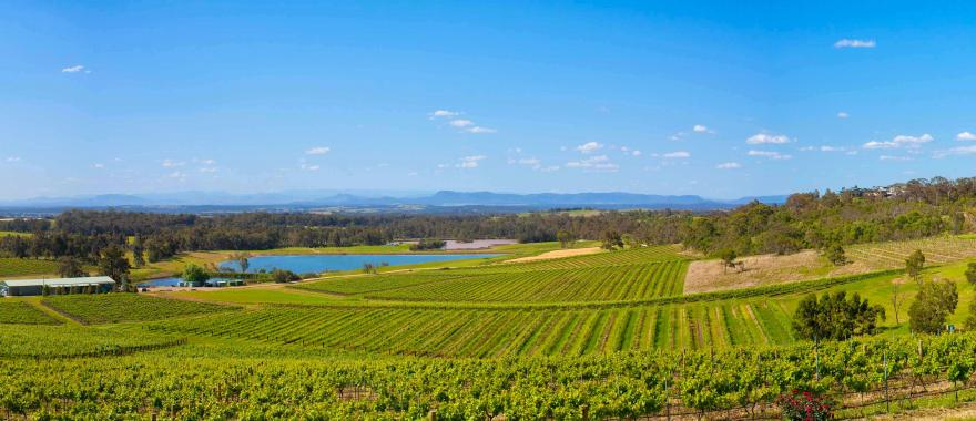 Hunter Valley Australia  City new picture : Australia Wine Tour: Hunter Valley, Adelaide & Yarra Valley | Zicasso