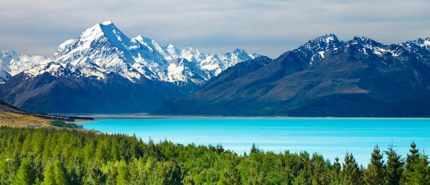 Day Tours Dunedin New Zealand