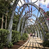 people walk through brisbane garden tour